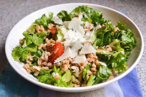farro and pecorino salad main